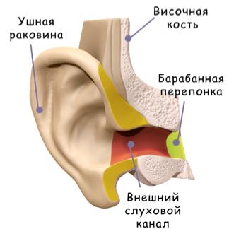 Слуховая система человека | Принципы имитации объемного звучания