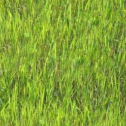 Grass Sample Texture | Идея отрисовки фейковой дальней травы