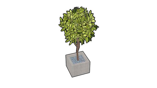 tree | 3d моделлер
