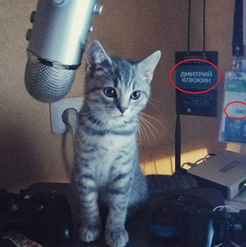 Дмитрий Клюкин | Кототред