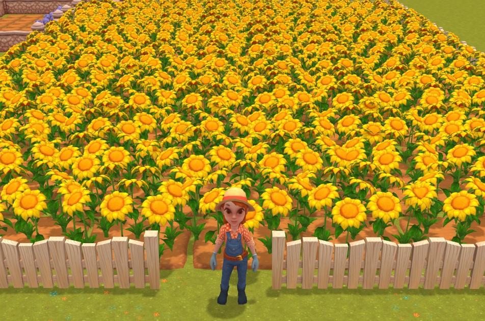 sunflower | Волшебники на ферме - не совсем обычная игра-ферма про не совсем обычных магов.