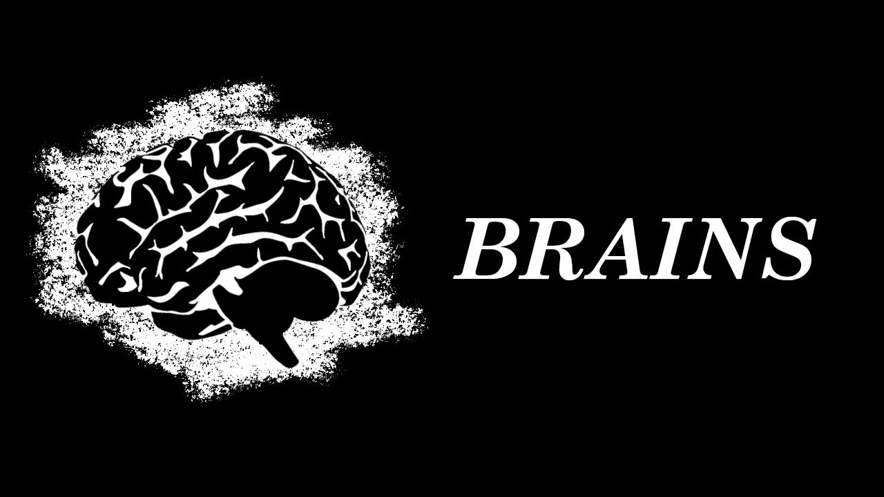 Brains 0 | Brains (головоломка на Android)