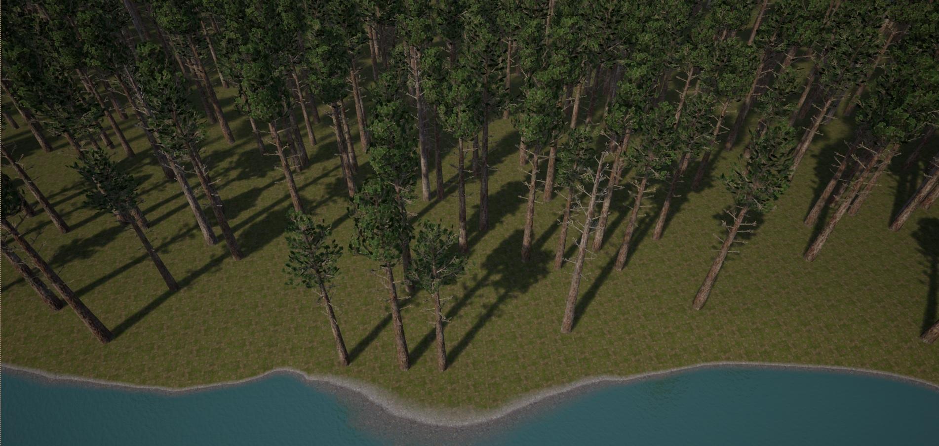 forest   Собираем команду в проект CFF