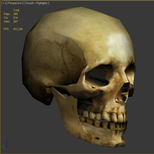 череп | Череп