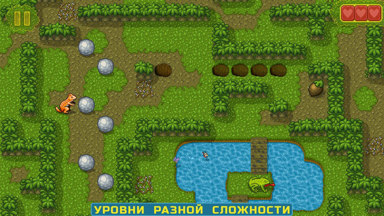 6-urovni_raznoi_slozhnosti | Chipmunk's Adventures / Приключения Бурундука [Android]