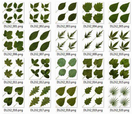 Flora3D(текстуры) | Flora3D 2016.12.09 (генератор растений)