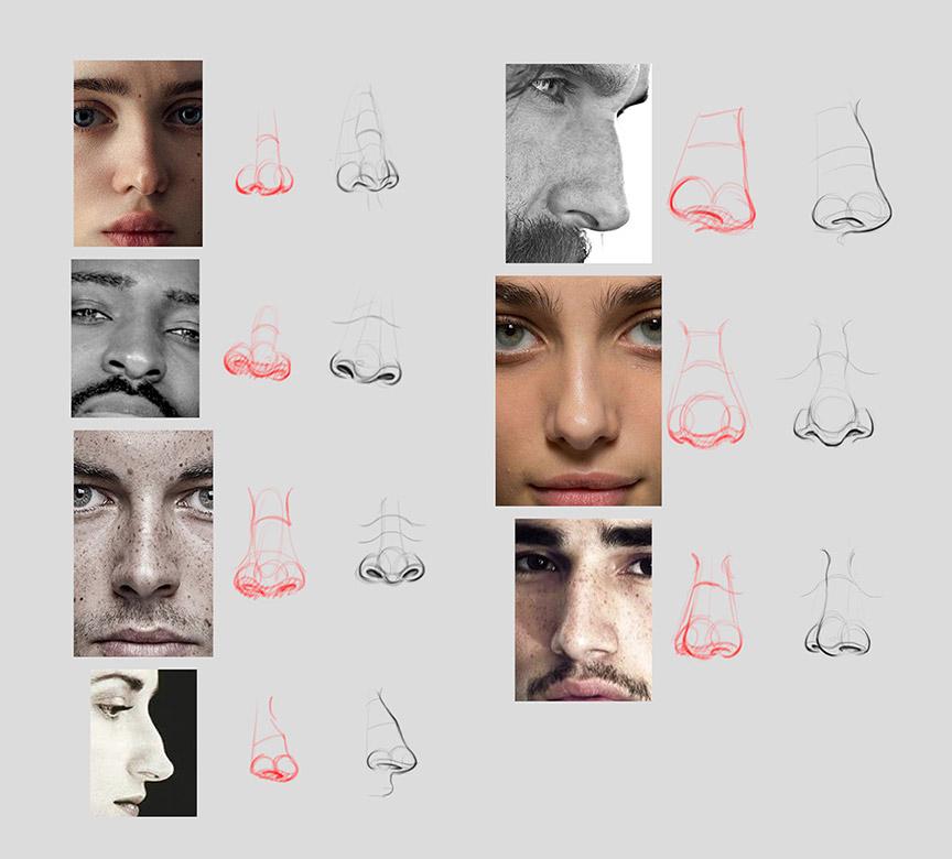 anatomy_noses_02 | Анатомия и дизайн персонажей(18+)