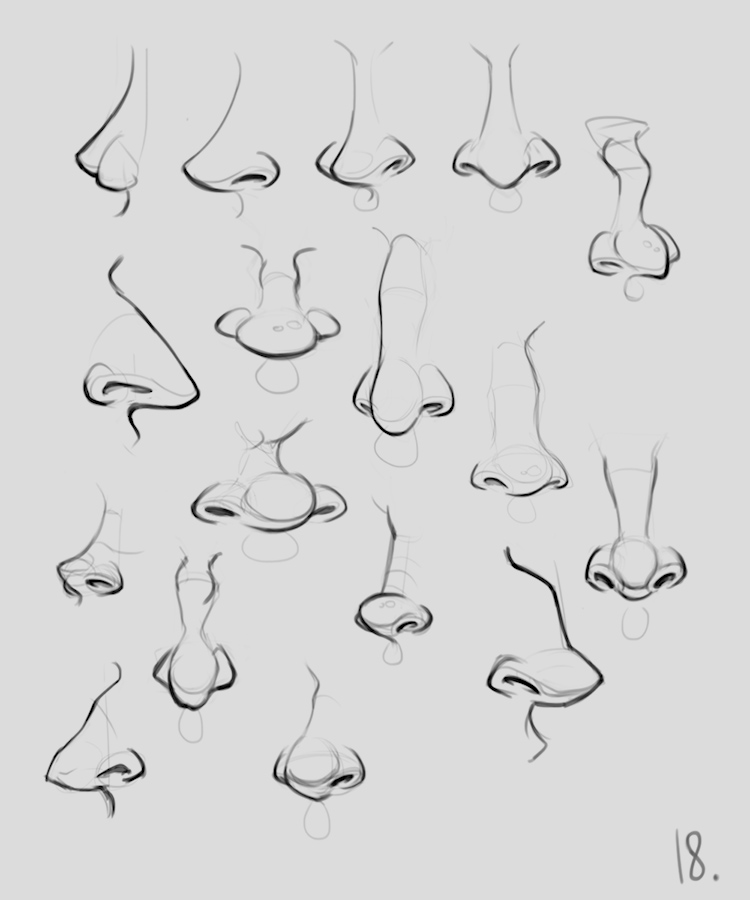 anatomy_noses_03 | Анатомия и дизайн персонажей(18+)