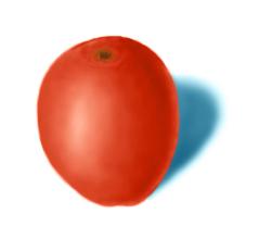 fruit   SunnyBunny учится рисовать