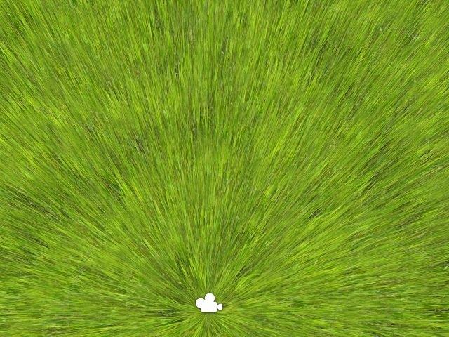 CFTG Grass top-down view | Идея отрисовки фейковой дальней травы