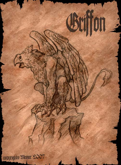 Griffon | MakaR`s drawing...