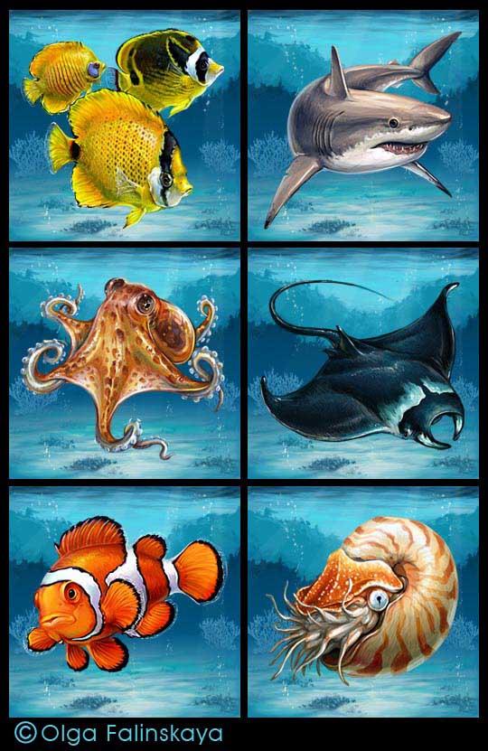 разрезные картинки морские обитатели старшая группа же, как