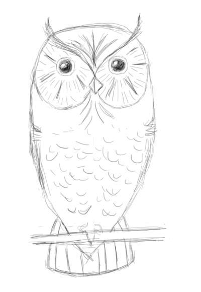 Owl | Новички. Вам сюда!!!