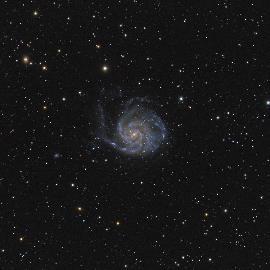 Галактика Вертушка (М101)