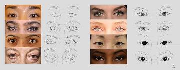 anatomy_eyes_01