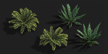 Foliage_Comp_02_50