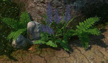 тень на крупной растительности