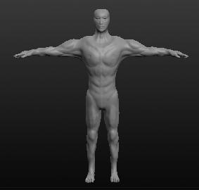 Модель мужчины, вид спереди