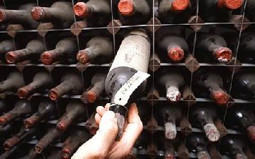 p_bordeaux-wine_1670703a