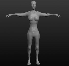 Модель женщины, вид спереди
