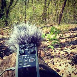 feel recording