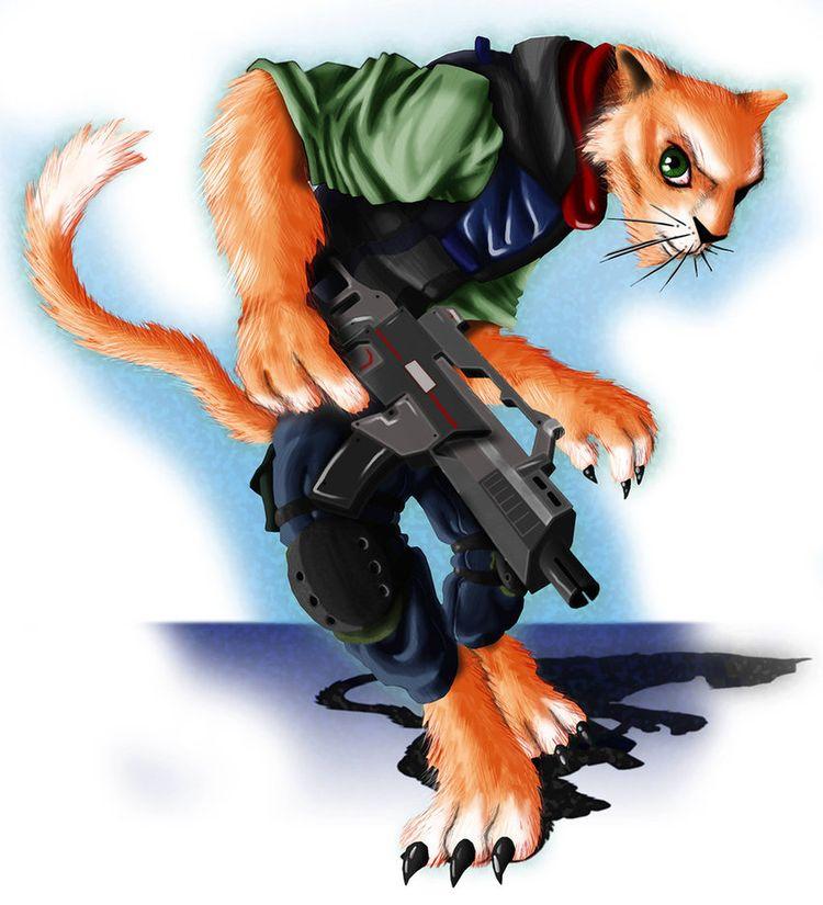 cat | Пара набросков.