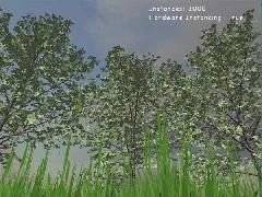 SpeedTrees (XNA)