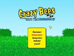 Bee 2010-11-30 21-23-58-04