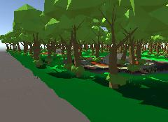 forest_001