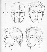 Пропорциональность человеческой фигуры. Моделирование головы человека.