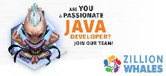 ZW Java Developer