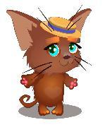 kitten casual 2d art