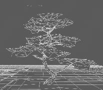PinusThunbergii_Grid