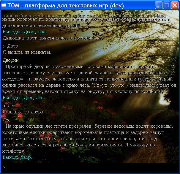TOM&HGE | ТОМ - платформа для текстовых игр