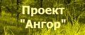 Проект Ангор (Онлайн стратегия с непрямым контролем)